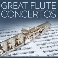 Vienna Festival Orchestra&Christian Muller-Pauli Concerto for Flute & Orchestra No.2 D Major KV.314: Allegro Aperto