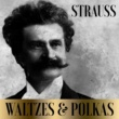 Orchestra Der Wiener Volksoper&Peter Falk Strauss - Waltzes & Polkas