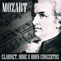 Alberto Lizzio,Mozart Festival Orchestra&Joseph Ducopil Concerto For Horn & Orchestra No.3 E Flat Major KV447: Allegro