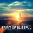 Summer Serenity Spirit of Blissful - 50 Relaxation Meditation Music & Healing Sounds