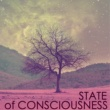 Spa Essentials State of Consciousness - Essential Sounds for Serenity, Mind Regulation for Regeneration
