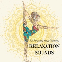 Yoga Devotion & Sun Salutations Yoga Music Academy Good Feeling