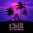 Chilled Ibiza Chill in Tropics - Summer Vibes, Relax Under Palms, Beach Party, Deep Relax, Tropical Lounge Music, Chill House