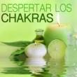Sanar el Alma Despertar los Chakras - Abrir la Mente y Harmonizar el Cuerpo y el Alma, Sanar con la Música