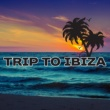 Dance Hits 2014 Trip to Ibiza - Holiday Time, Summer Hits 2017, Dancefloor, Chill Out Party Time, Good Energy, Lounge Summer