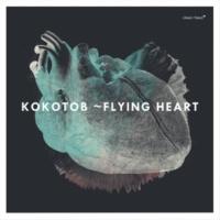 Kokotob/Taiko Saito/Niko Meinhold/Tobias Schirmer Korokoro