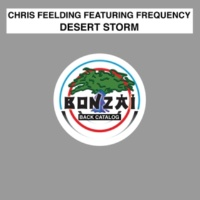 Chris Feelding/Chris Feelding/Frequency Desert Storm (Chris Feelding Tribal Remix)