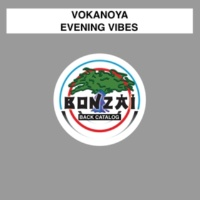 Vokanoya/Vitally Evening Vibes (Vitally Remix)