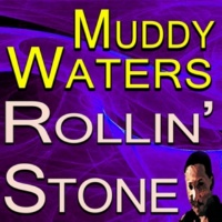 Muddy Waters She Moves Me
