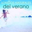 Ambient Arena Sonidos Naturales del Verano - Ambiente & Agua del Mar, Olas y Pájaros Cantores del Bosque