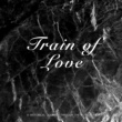 Various Artists Train of Love