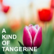 Various Artists A Kind of Tangerine
