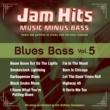 SoKnox Swampers Jam Hits Blues Bass, Vol. 5