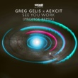 Greg Gelis&Aexcit See You Work (PROMI5E Remix)