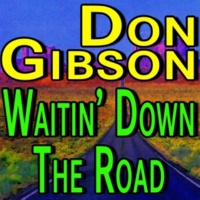 Don Gibson Red Lips White Lies and Blue Hours