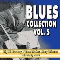 John Lee 'Sonny Boy' Williamson Black Gal Blues