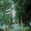 kasiwade モールスシングル