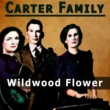 The Carter Family Wildwood Flower
