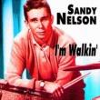 Sandy Nelson I'm Walkin'