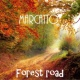 Marcatto Forest Road