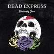 Dead Express