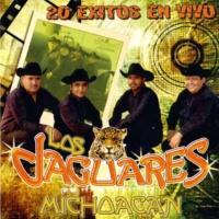 Los Jaguares de Michoacan Lo Vas a Pagar