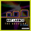 Ant LaRock/Zhao The Question