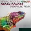 Mauro Picotto Iguana (Organ Donors Subground Remix)