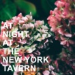 Various Artists At Night at the New York Tavern
