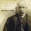 Bob Delyn a'r Ebillion Dal i 'Redig Dipyn Bach