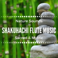 Shakuhachi Sakano Third Eye for Visualization and Lucid Dreaming