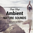 Ambient Sound Center Ambient Nature Sounds - Relaxing New Age Music, Zen Music for Deep Sleep