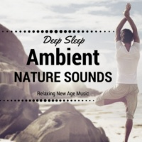 Ambient Sound Center Relaxing New Age