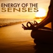 Lama Monk Energy of the Senses - Soft Relaxing Sounds of Nature Purity for Mind Body Connection