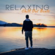 Chillout Music Zone Relaxing Chill Out Beats - Calming Sounds for Summer, Beach Relaxation, Stress Relief, Easy Listening