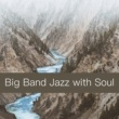 Various Artists Big Band Jazz with Soul