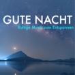 Musiktherapie Gute Nacht mit Musik - Ruhige Musik zum Entspannen, Einfach Himmlische Natur Entspannung