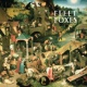 Fleet Foxes He Doesn't Know Why