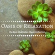 Pure Relaxation Ensemble Oasis of Relaxation - Soothing Deep Sleep Music, the Best Meditation Music Collection for Insomnia to Fall Asleep