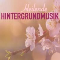 Hintergrundmusik Akademie Club Wohlbefinden (Klanglandschaft)