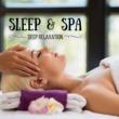 The Healing Guru Sleep & Spa: Massage Music for Deep Relaxation and Healing Chakra Balancing