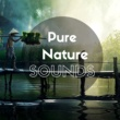 Gentle Music Academy Pure Nature Sounds - Gentle Instrumental Music and Soothing Sounds for Relaxation, Massage, Spa, Wellness Centers