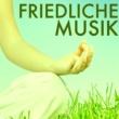 Achtsamkeit Meditationsmusik Friedliche Musik - Innerer Frieden Musik, Musiktherapie und Mantra für die Seele