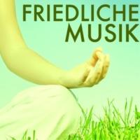 Achtsamkeit Meditationsmusik Musik für Schlafprobleme