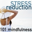 Shades of Wellness Stress Reduction 101 - Mindfulness Based Music Therapy, Control Trance Meditation