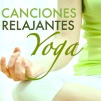 Bienestar Maestro & Musica de Yoga Posturas de Yoga para Principiantes
