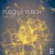 Pusch & Pusch What! EP