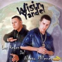 Wisin & Yandel/Baby Rasta Todas Quieren Ser las Mas Bellas