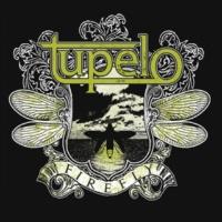 Tupelo Firefly