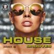 Mister Dj House Grooves